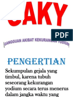 Pp Display Gaky