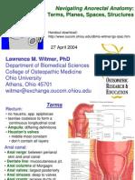Navigating Anorectal Anatomy