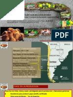 Análisis de la cadena de valor de la papa en Chile (PowerPoint)