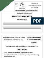 Formatos Para Legalizar La Empresa-1