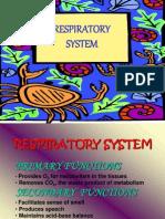 Med Surg Respiratory System