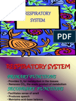 Med Surg Respiratory System