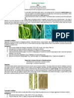 Diseases of Paddy