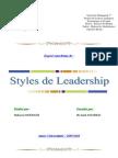 Styles de Leadership