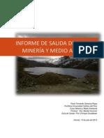Informe Salida de Campo - Medio Ambiente - Final
