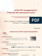 Overview of the PVY management in France by the seed potato sector (PowerPoint)