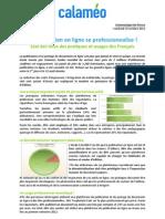 Calameo Etude Publication en ligne 2012