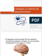 Neuronas Y Sinapsis La Historia de Su Descubrimiento