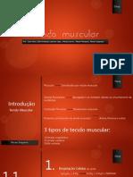 Tecido Muscular - versão final