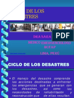 Ciclos de Desastres