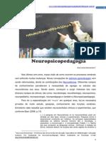 Neuropsicopedagogia informações