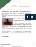 Reflexologia Del Lingam