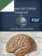 Funciones y Patología del Lóbulo Temporal (Expo con el Dr. Polar)