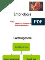 Aulo de Embriologia 20330 (1)