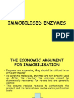Imobilized Enzyme
