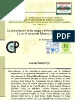 Presentacion Ona 2009
