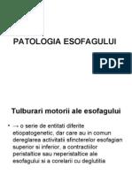 patol esofag