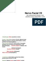 Nervos Facial VII  Núcleos dos Nervos Cranianos Aula 09 .pptx