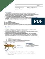 Estudo Dirigido - Artrópodes