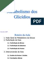 Metabolismo Dos Carboidratos II