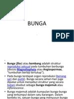 Presentation1.Ppt Struktur Bunga