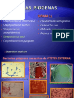 Material de Apoyo Microbiologia 2012