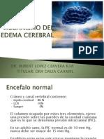 Neuro Edema