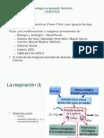 Fisiología comparada_Nutrición_1Bach