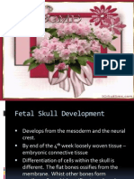 Fetal Skull and Circulation Ppt