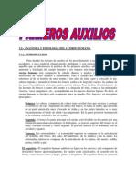 Primeros Auxilios PDF