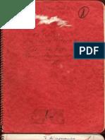El diario manuscrito del Che Guevara