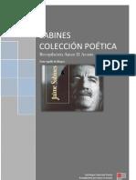 Jaime Sabines_Coleccion Poetica_Amoz H Acosta