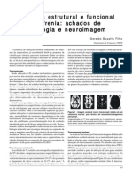Anatomia Estrutural e Funcional Da Esquizofrenia