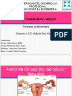 Cateterismo Vesical g