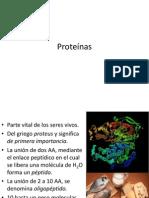 Proteinas Megatlon
