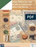 Guia_de Buenas Practicas Para Conservas Vegetales y Frutas