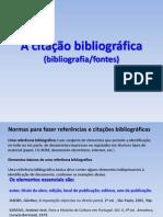 A citação bibliográfica