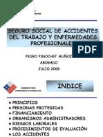segurosocialaccidentes(SUSESSO)