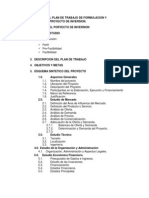 Estructura Del Plan de Trabajo de Formulacion y Evaluacion de Proyecto de Inversion