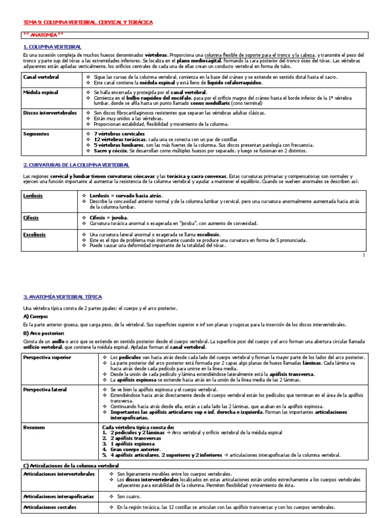 Resumen T9 - Bontrager