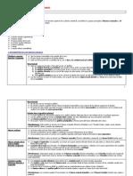 Resumen T13 - Bontrager