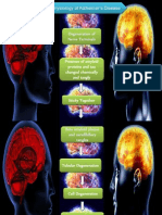 Alzheimer Pathophysiology