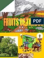 Fruits de Tardor