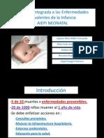 Seminario N05 - AIEPI Neonatal