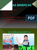 Bacterias Beneficas