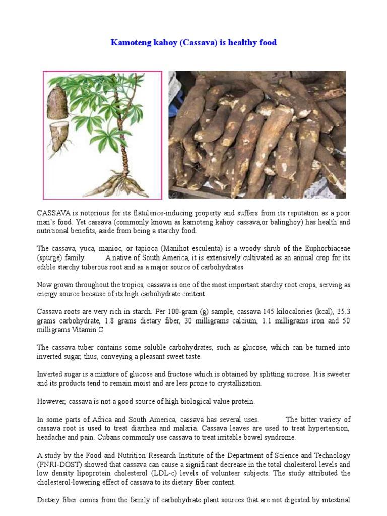 Health benefits of cassava - Health Benefits Of Cassava 2