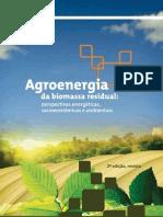 Agroenergia biomassa residual