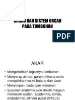 Organ Dan Sistem Organ Pada Tumbuhan (1)