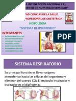 Sistema Respiratorio Diapositivas