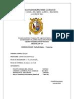 98256903 Informe 10 Carbohidratos y Proteinas